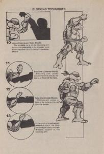 Karate Turtles